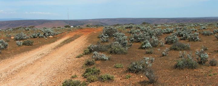 Lincoln Gap Wind Farm - Australian Tenders