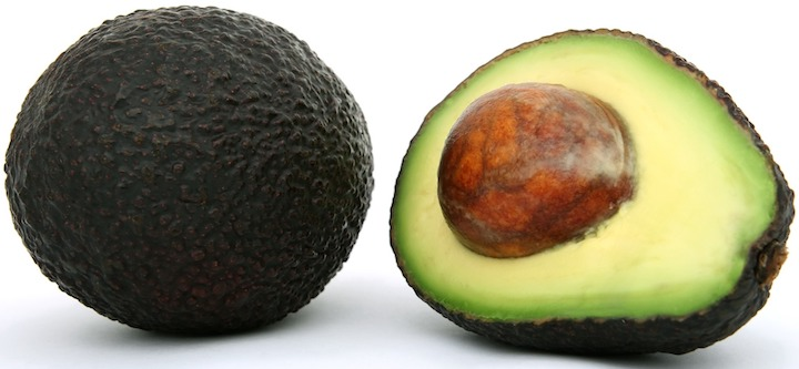 avocado creative development project - australian tenders