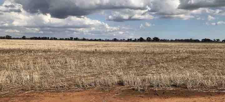 Numurkah Solar Farm - Australian Tenders