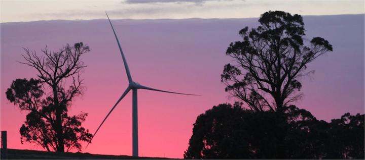 coppabella wind farm EOI NSW - australian tenders