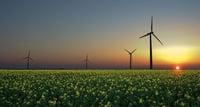 Reverse Auction Renewables RFT Victoria