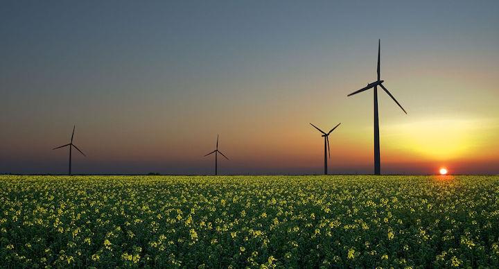 Reverse Auction Renewables RFT Victoria - Australian Tenders